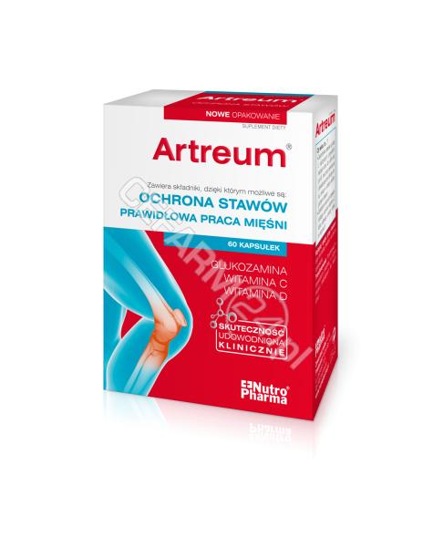 PURITAN'S PR Artreum x 60 kaps