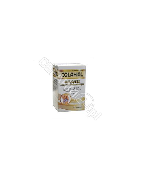 GORVITA Colahial - kolagen z kwasem hialuronowym x 60 kaps