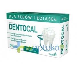 PRZEDSIĘBIORSTWO FARMACEUTYCZNE LEK-AM SP. Z O.O. Dentocal 60 tabletek