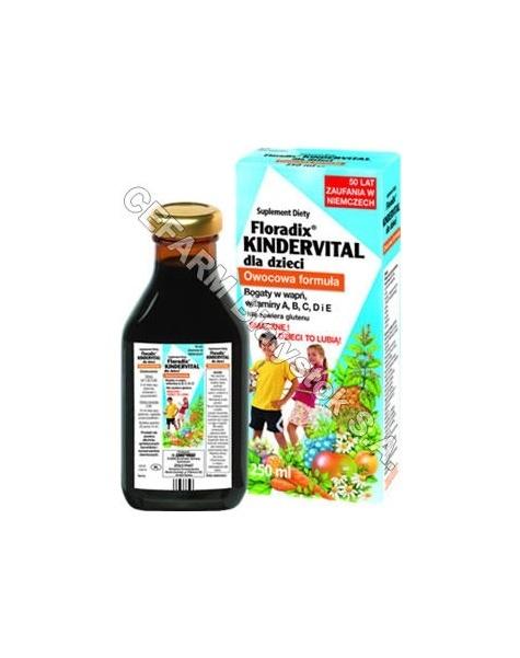 SALUS-HAUS Floradix kindervital tonik dla dzieci 250 ml