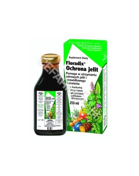 SALUS-HAUS Floradix ochrona jelit tonik 250 ml