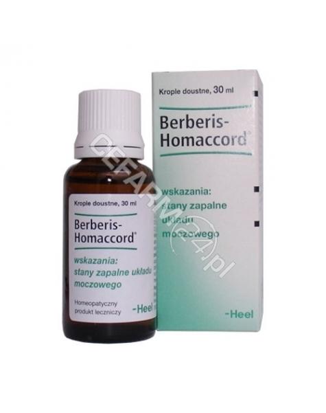 HEEL Heel berberis homaccord krople 30 ml