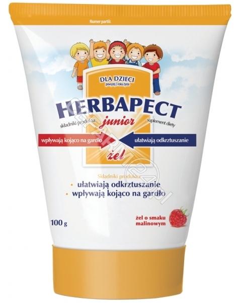 AFLOFARM Herbapect junior żel o smaku malinowym 100 g