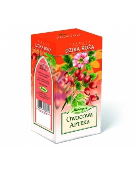 HERBAPOL LUB Herbata lubelska z różą 3 g x 20 sasz