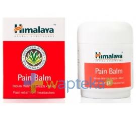 LBIOTICA HIMALAYA Balsam kojący Pain Balm 50 ml