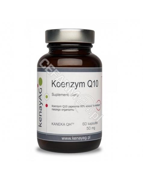 KENAY Koenzym q10 x 60 kaps (Kenay AG)