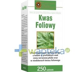 HOLBEX Kwas foliowy 250 tabletek HOLBEX