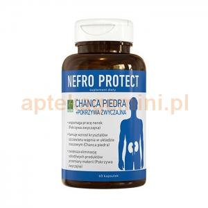 A-Z MEDICA SP. Z O.O. Nefro Protect 60 kapsułek
