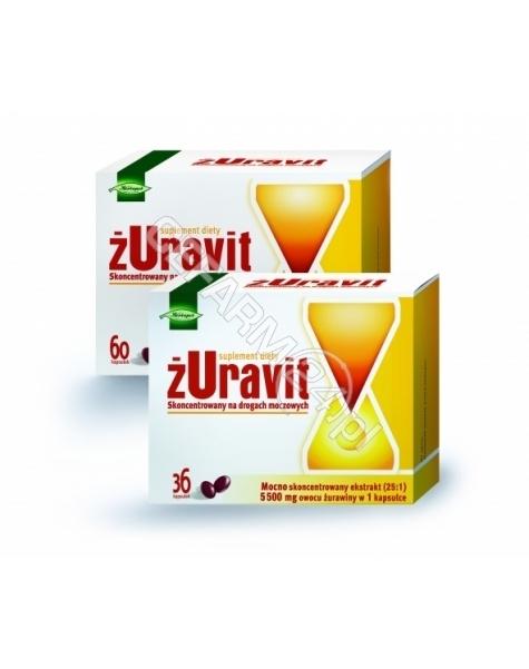 HERBAPOL LUB Żuravit x 36 kaps